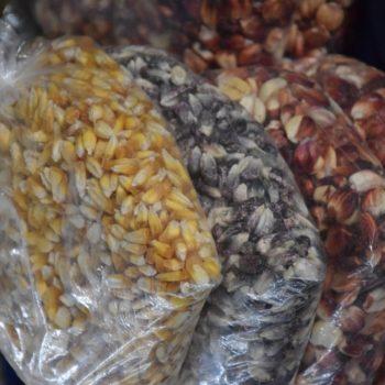 Kunterbunt sind die verschiedenen Maissorten in Peru. Foto: Privat