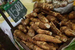 Maniok ist das Hauptnahrungsmittel in Paraguay. Foto: Privat