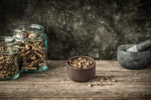 Wie können Köche Insekten in alltäglichen Gerichten einbringen? Melchior Füglistaller von Essento berichtet dazu und bringt auch Exemplare zum Probieren mit. Foto: Essento/Tina Sturzenegger