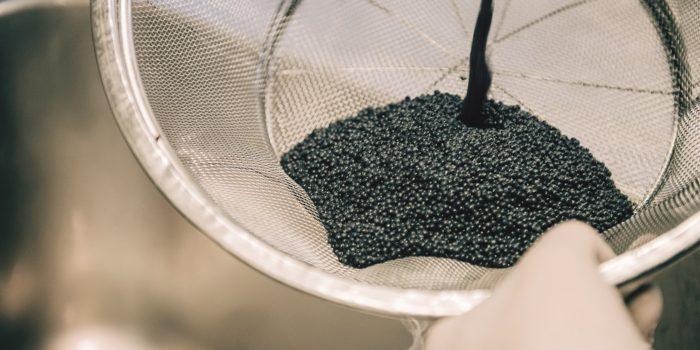 Kaviar ernten – eine einmalige Chance