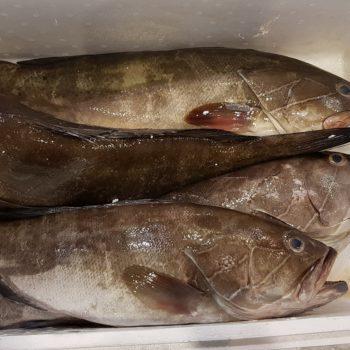 In der Fischhalle war die meiste Ware bereits verkauft. Foto: VKD