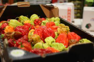 In der Halle für Obst und Gemüse wurde es bunt. Foto: VKD