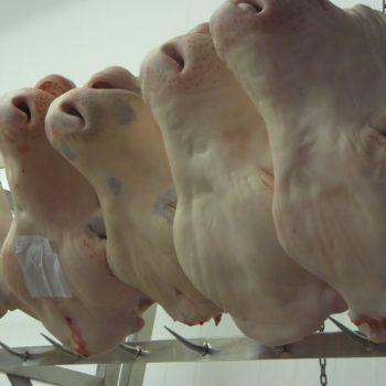 Vom Herz bis zum Kopf: In Rungis wir fast alles vom Rind verkauft. Foto: VKD