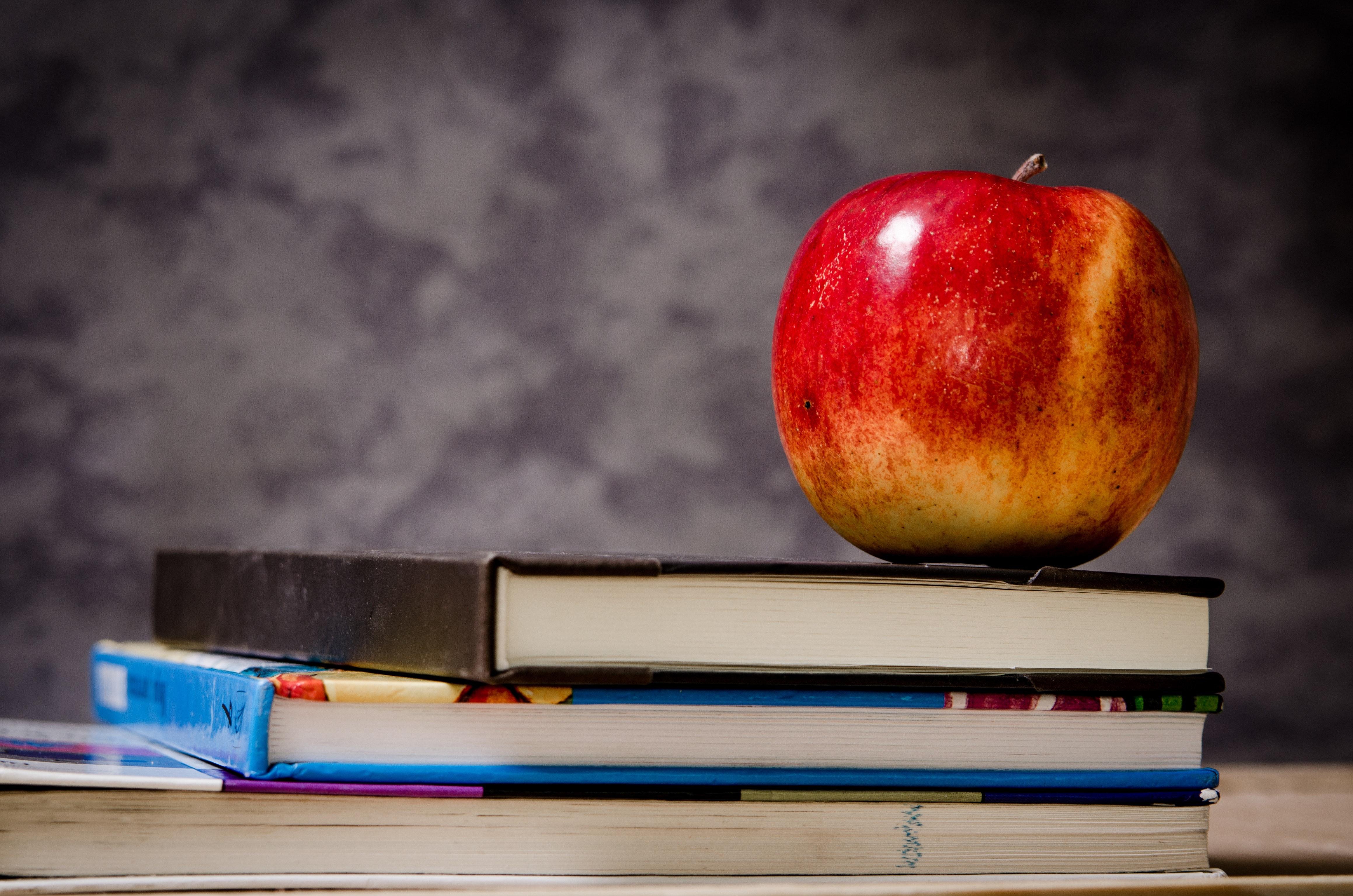 Schulverpflegung – auf den Bedarf und die Bedürfnisse von Kindern richtig eingehen