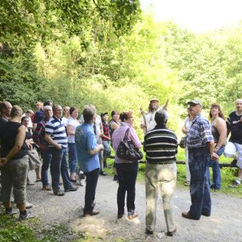 Weiterbildung mit Wildkräutern: Ausflug in den Teutoburger Wald. Foto: Köcheclub Lippe von 2010 e. V.