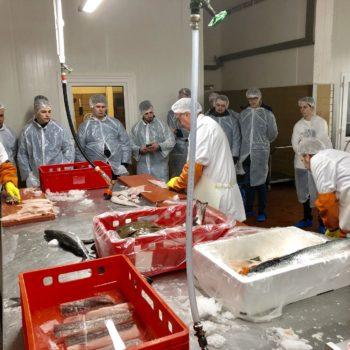 Besuch bei Cux Fisch Ditzer. Foto: Landesverband der Köche Niedersachsens