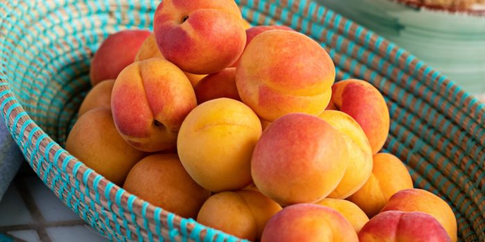 Aprikose: Obst im Pelzmantel